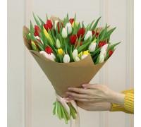 Тюльпаны микс 51шт.