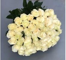 Роза белая 51шт.