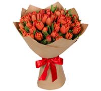 Тюльпаны красные 51шт.
