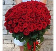 Роза красная 101шт.
